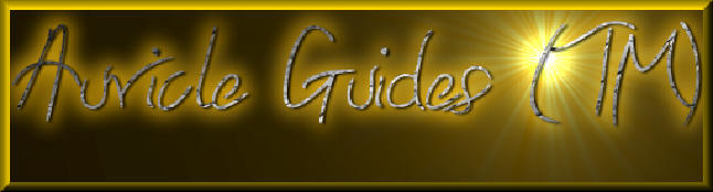 Auricle Guides was created by Hayley Jo-Anne and is exclusive here at Kolor Kachina